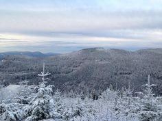 Sneeuw in het zwarte woud!