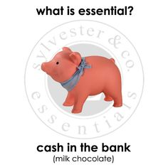 pennies What Is Essential, Pennies, The Hamptons, Dinosaur Stuffed Animal, Essentials, Toys, Animals, Activity Toys, Animales