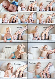 monthly baby pictures