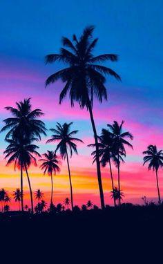 Art 367817494564458978 - Summer Sunset photography sunset beach beautiful ocean tropical travel palm trees vacation Source by spikemcfry Beautiful Ocean, Beautiful World, Beautiful Places, Trees Beautiful, Amazing Nature, Summer Sunset, Sunset Beach, Hawaiian Sunset, Beach Sunsets