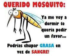 Querido mosquito