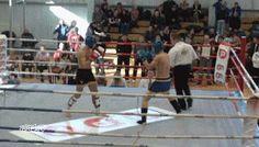 360 Spin Kick #Knockout #mma