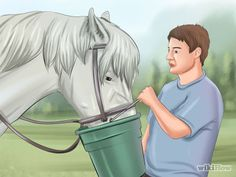 How to Feed a Horse Two Horses, Types Of Horses, Anime, Art, Horses, Art Background, Kunst, Cartoon Movies, Anime Music