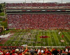 Arkansas takes the Field Picture at Arkansas Razorback Photos
