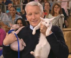 George & Harry, cats that look like Anderson Cooper..not nice, I know, but funny!