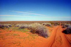 Desierto de Simpson (Australia) 4