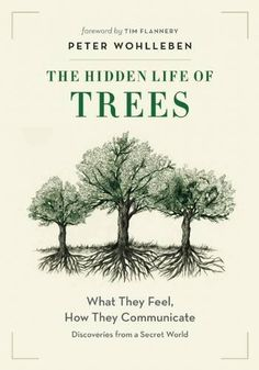 The Hidden Life of Trees: What They Feel, How They Commun... http://www.amazon.com/dp/1771642483/ref=cm_sw_r_pi_dp_tN3fxb1GRN411