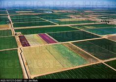 Agriculture - Aerial view of cultivated farmland of various crops / CA - Imperial Valley (AGS-161121-D-5807)