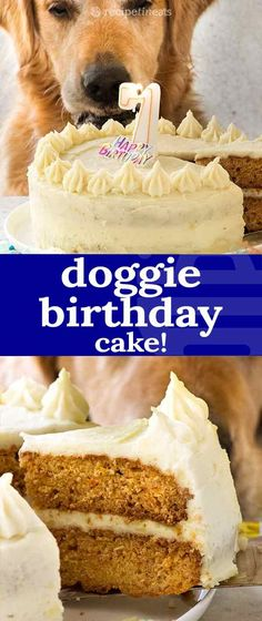 """A dog cake recipe to celebrate Dozer's birthday! A layer cake frosted with fluffy """"buttercream"""" …. but it's made with wholesome pooch friendly ingredients! Recipe video above. A dog cake with Dog Safe Cake Recipe, Dog Cake Recipes, Dog Treat Recipes, Frosting Recipes, Dog Food Recipes, Dog Frosting Recipe, Fluffy Frosting, Vanilla Frosting, Buttercream Cake"""