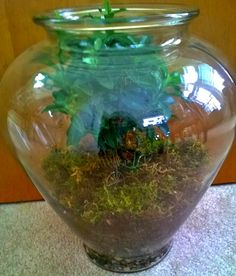 Terrarium with central tree and tiny bike inside.