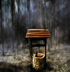 TaxusArt: Clearing in forest Outdoor Furniture, Outdoor Decor, Firewood, Bench, Park, Home Decor, Homemade Home Decor, Benches, Parks