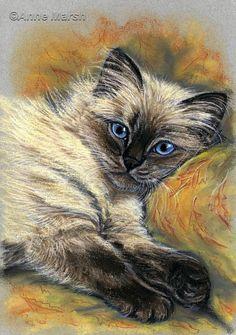RAGDOLL CAT PEACE AT LAST LIMITED EDITION PRINT OF PAINTING ANNE MARSH ART | eBay