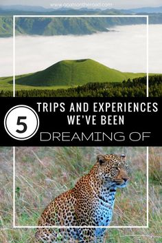 5 Trips and Experiences We've Been Dreaming Of