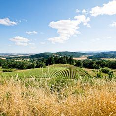 Wine country dream towns
