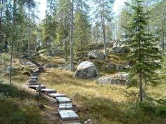 A nice walk to top of the hill. Syvasenvaara and other nice nature places in Rovaniemi.
