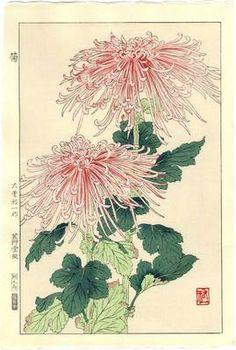 YUICHI OSUGA Japanese Woodblock Print CHRYSANTHEMUM 1954