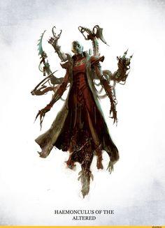 Warhammer-40000-фэндомы-Dark-Eldar-Hellion-1272012.jpeg (1135×1563)