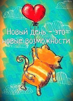 Новый день - это новые возможности  #утро #позитив #мотивация #сердце #добро #доброеутро Crazy Cat Lady, Crazy Cats, All About Cats, Winnie The Pooh, Disney Characters, Fictional Characters, Pictures, Digital, Minions