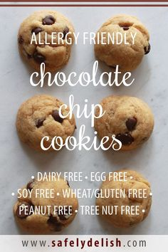 These allergy friendly Chocolate Chip Cookies are soft fluffy and chewy and best of all they are free of the top 8 allergens Thats right they are Top 8 Free wheat and gl. Nut Free Cookies, Cookies Sans Gluten, Dessert Sans Gluten, Vegan Gluten Free Cookies, Mug Cakes, Biscuits Sans Lactose, Allergies Alimentaires, Little Mac, Wheat Free Recipes