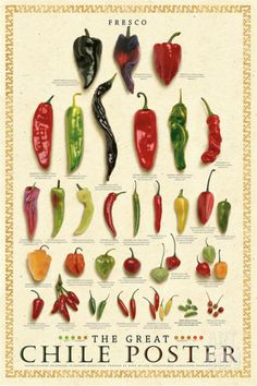 Chile Poster Fresco The Great Mark Miller Fresh Peppers Chili Food Cook Kitchen Prints, Kitchen Art, Kitchen Posters, Chile Picante, Types Of Peppers, Food Charts, Barbacoa, Cool Posters, Travel Posters