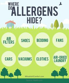 where do allergens hide apparently everywhere make sure you do some