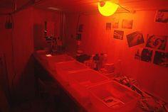 It's A Darkroom