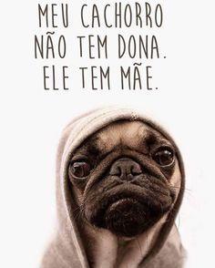 É ASSIM MESMO! <3 <3 <3 #petmeupet #cachorro #amocachorro #filhode4patas