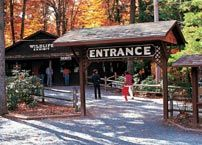 Bushkill Falls - a giant playground for the whole family with eight waterfalls, hiking trails, paddleboats, fishing, picnic areas and a children's playground