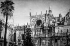 Seville Cathedral Morning Light BW @joan1992 #seville #spain #churches