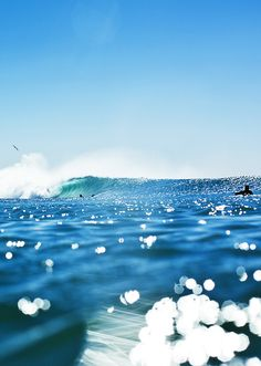 surf surfing surfer waves ocean sea water swell surf culture island beach ocean water stoked surf's up salt life Sea And Ocean, Ocean Beach, Ocean Waves, Theme Nature, All Nature, Photo Ocean, Am Meer, Surfs Up, Ocean Life