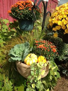 Froehlich S Farm Turns A Simple Hanging Basket Into Beautiful Fall Creation Baskets
