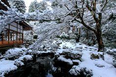 雪景色! ~大原 三千院~ : THE PHOTO DIARY By CANON!