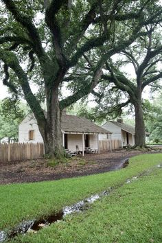 New Orleans Day Trip to Oak Alley Plantation Louisiana spanish oak trees with live moss Abandoned Churches, Abandoned Places, Quebec, Southern Plantation Homes, Louisiana Plantations, Haunted Places, Haunted Houses, Live Oak Trees, New Orleans Travel