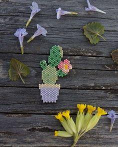 Cactus (Charlotte Souchet)