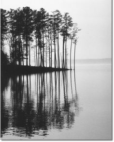 """Landscape Picture """"Trees Reflected in a Lake"""" Wall Art,  Fine Art Home Decor Black and White Print on Photo Paper or Canvas, Tree Picture"""