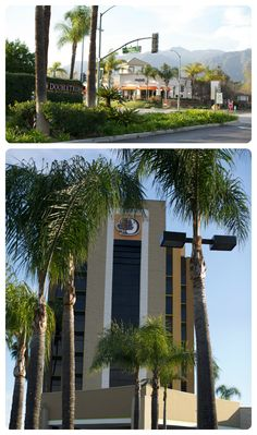 Double Tree in Monrovia, California - in the heart of the San Gabriel mountains!
