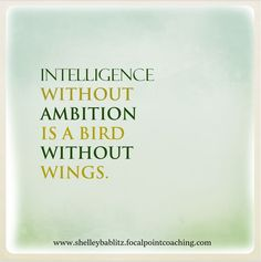 Intelligence without ambition is a bird without wings. #Ambition #BeAmbitous #FocalPointYEG #FocalPointEdmonton #CoachShelley