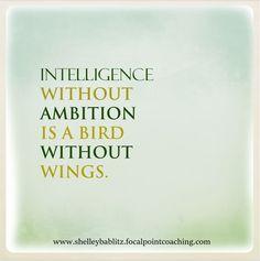 Intelligence without ambition is a bird without wings. #Ambition #BeAmbitous #FocalPointYEG #FocalPointEdmonton #CoachShelley