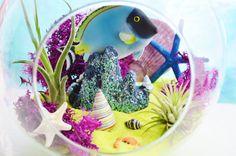 Just Keep Swimming ~ Blue Fish Terrarium - Round Glass Globe Sitting Terrarium Kit with 2 Tillandsia Air Plants - Home Decor