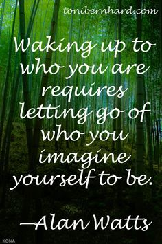 Alan Watts.Waking up to who you are requires letting go of who you imagine yourself to be