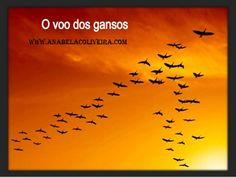 http://anabelacoliveira.com/e/Voando-Alto-Trabalho-em-Equipe