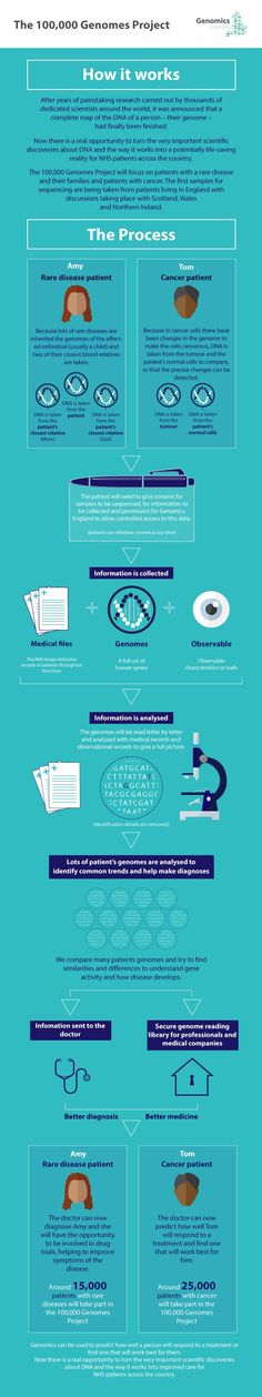 How it works: the human genome.