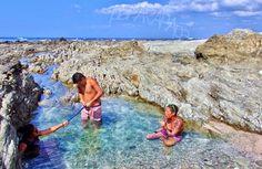 Marieta socializando en Pozas de Isla Rosada. Playa Garza. Costa Rica.