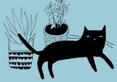 cat_ Nanna Prieler