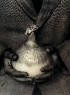Onion with hands and herringbone | holeandcornermagazine.com