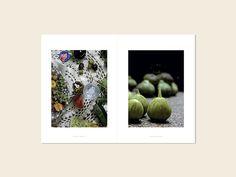 Behance :: Editing Todos à Mesa Behance, Polaroid Film