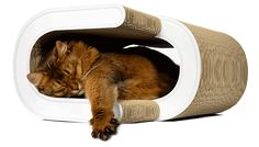 Cat-on Designer Cardboard Cat Scratchers from Germany. Great designs! #cats #CatScratcher