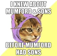 (hipster cat,cat,mumford and sons,mumford & sons)