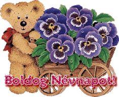 Happy Birthday, Teddy Bear, Humor, Happy Brithday, Urari La Multi Ani, Humour, Happy Birthday Funny, Teddy Bears, Funny Photos