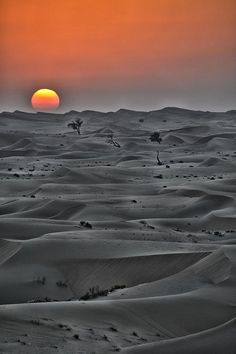 ✯ Desert Sunset